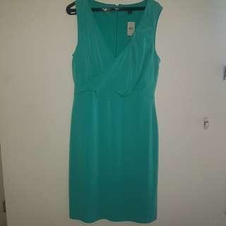 ANN TAYLOR tosca dress