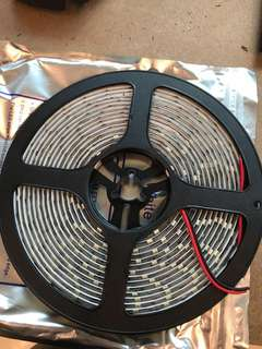 Led 5m roll (white and red)