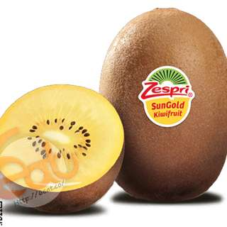 紐西蘭特大金奇異果 | New Zealand Zespri Jumbo SunGold Kiwi