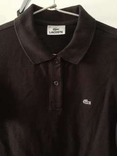 Lacoste Brown Polo Shirt | Authentic