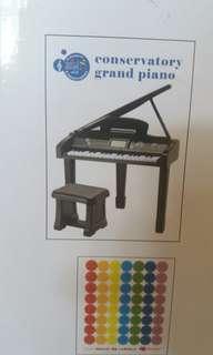 Brand new conservatory grand piano