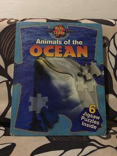 Animals of the Ocean Book