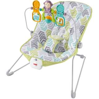 Fisher Price DTG94 Baby's Bouncer, Green/Blue/Grey