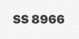 車牌轉讓 SS 8966