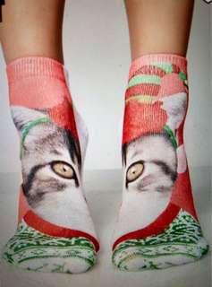 【限時優惠】 美國進口可愛小貓短襪