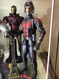 Hottoys ant man