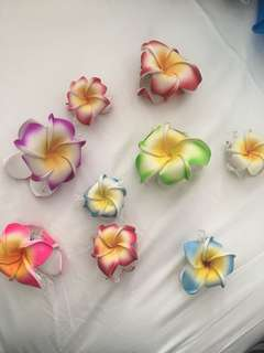 Flower 🌸 Hair Clips