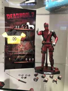 Deadpool Hottoys hot toys 2.0 次日訂單