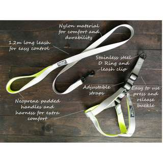 Pet leash and harness set