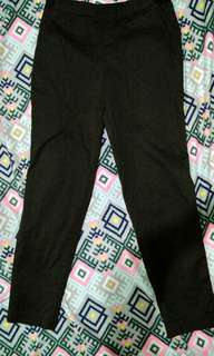 Uniqlo slacks/pants