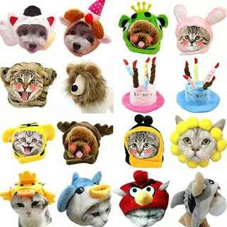 💥全新💥超低價💥寵物飾品💥寵物帽💥尺寸可選💥