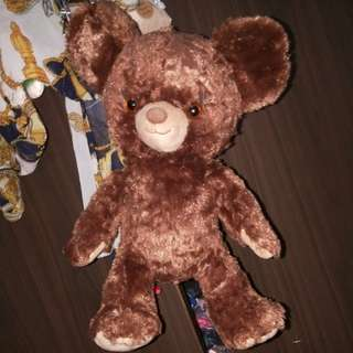 🚚 unibearsity大學熊