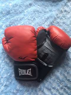12 oz Everlast Classic Boxing Training Gloves