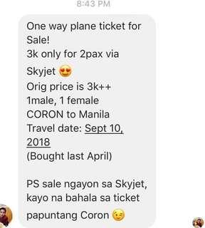 Coron plane ticket