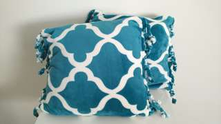 2x pretty plush cushions