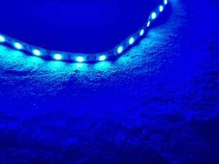 藍色發光LED燈 中國製
