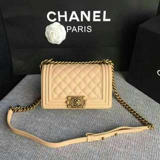 Chanel Leboy Mini