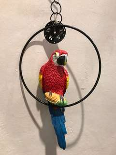 Parrot / Macaw hanging display