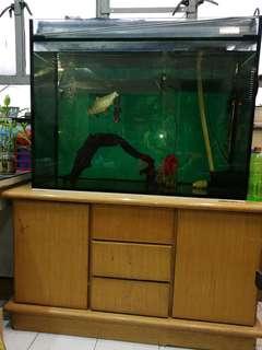 魚缸連柜三分玻璃39.5x21x28吋