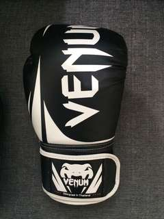 VENOM BOXING GLOVES 2.0
