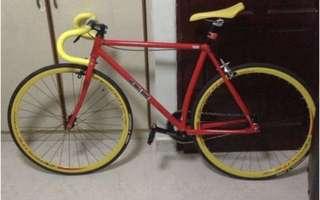 Bear's Bike Fixie