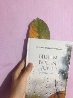 Hujan Bulan Juni by Sapardi Djoko Damono buku sajak