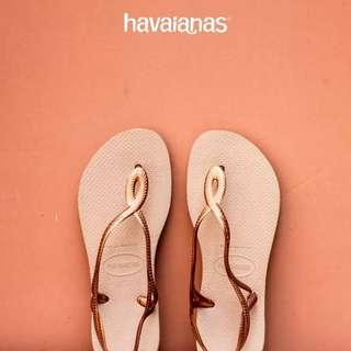 全新 僅試穿39 havaianas巴西人字拖夾腳拖