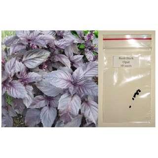Dark Opal Basil Herb Seeds