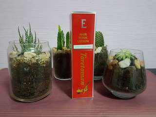 E Hair Tonic Lotion Instock