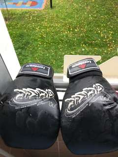 Boxers gloves