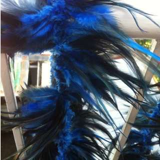 Feathers - blue ( color ) 36 inches width - height 5 inches