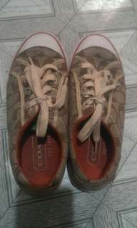 👟Coach Shoes