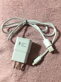 Samsung original Fast charger only