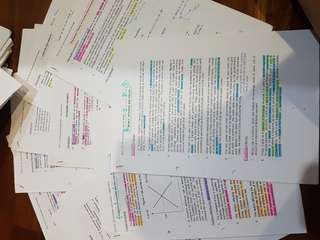 H2 Econs Notes and Papers revision pack