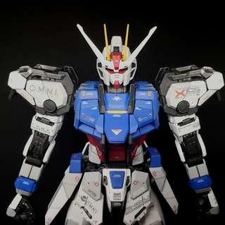 PG Strike Gundam, painted,Bandai,gunpla