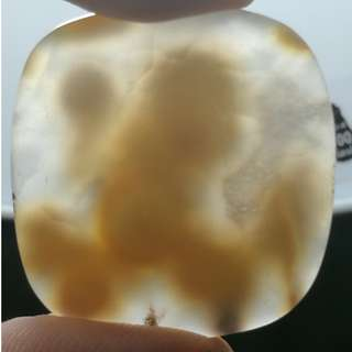 Natural Transperant Monkey figure Agate. 100% Natural formation. No artificial touch ups.Rare!
