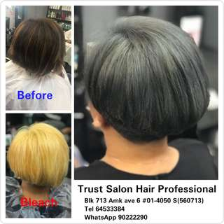 Stylists hair cut,colour,highlight,rebonding,perming,scalp & hair treatment etc.