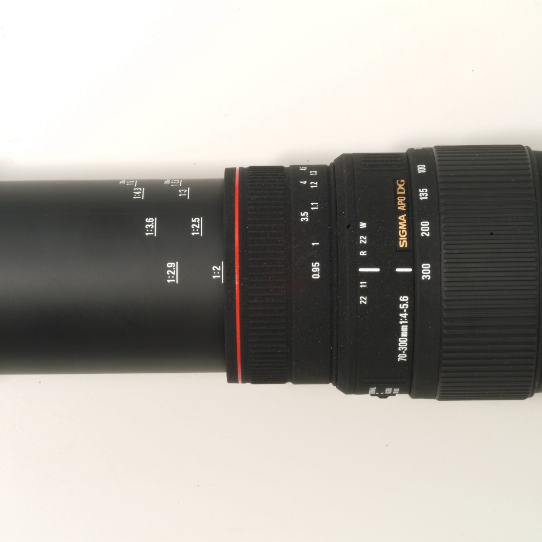 Sigma Dg Apo 70 300mm F4 56 Marco Lens Nikon F Mount 4 Os For Photography Lenses On Carousell