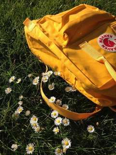 Kanken Fjallraven Inspired in Warm Yellow