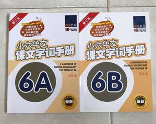 [BN] A Handbook of Chinese Vocabulary for Primary 6