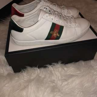 Gucci Runners