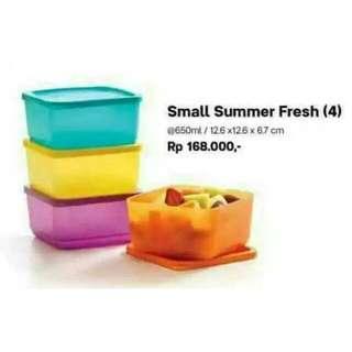Small summer fresh tupperware