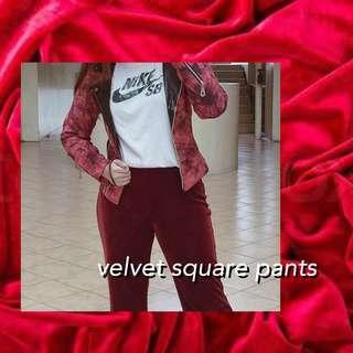 Marks & Spencer (Velvet Square Pants)