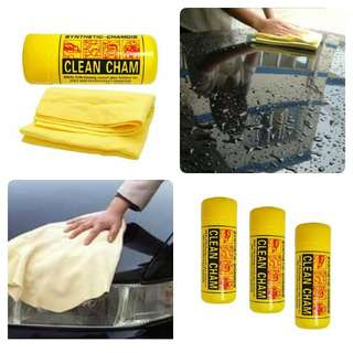 Clean Cham for Cars and other Appliances
