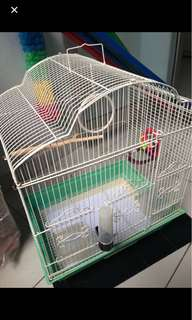 Bird cage / hamster cage