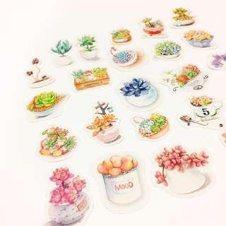Set 10 : 26 pieces of cactus / succulent stickers