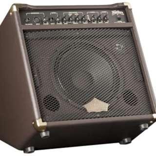 Washburn WA30 Acoustic Guitar Amplifier