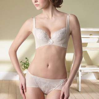 Lady 安布羅莎系列 機能調整型內衣 膚
