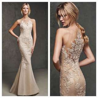Pronovias latonia inspired champagne evening dress