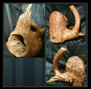 Raja Kayu wood